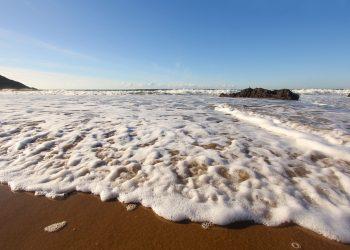 Sampler y la Calidad del Agua en Playas