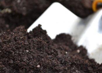 Toma de muestras de suelos